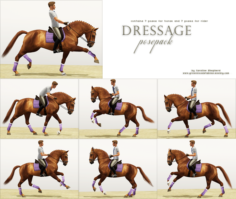 Dressage Posepack By Greenwood Stables Sims Pets The Sims 3 Pets Sims 4 Pets