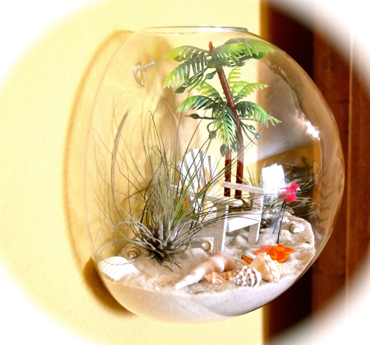 Beach Terrarium Wall Kit ~ Air Plant Terrarium  Glass