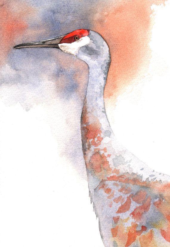 Sandhill Crane By Louise De Masi In 2020