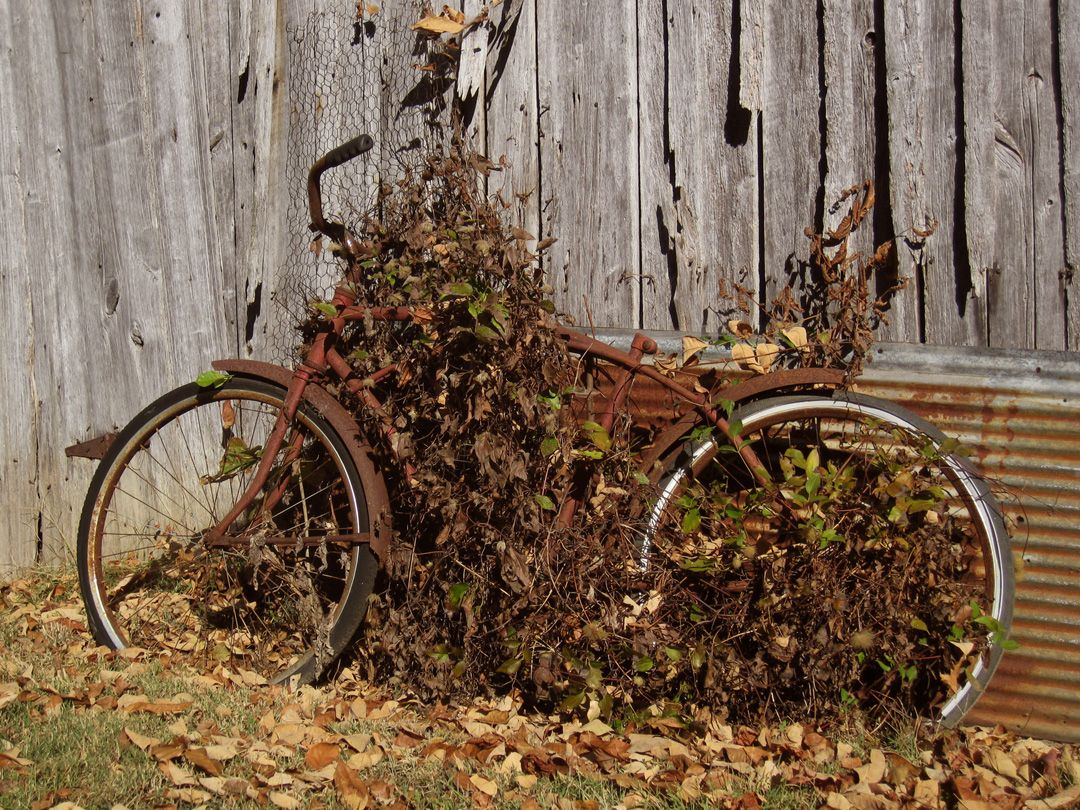 Rusty Bike Ghost Bike Bicycle Pictures Bicycle
