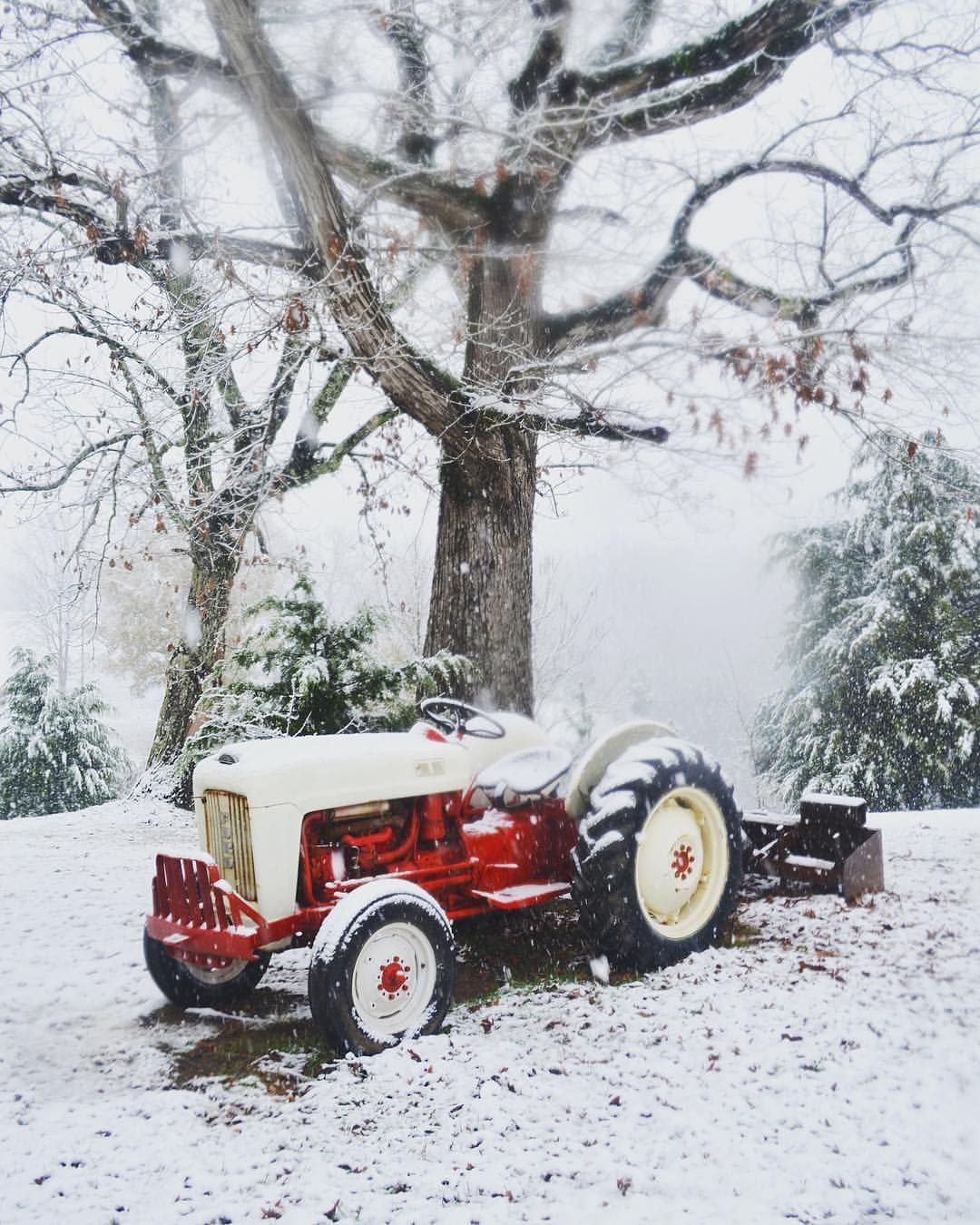 It S Snowing In Alabama Thank You Santa Alabama Snow Tractor In The Snow Vintage Tractor Little White House White Tractor Vintage Tractors