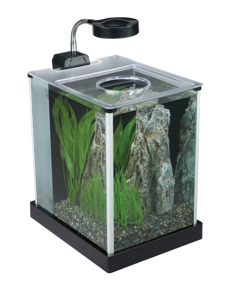 Aquarium fish tank starter kit - Aquarium Fish Tank Stand 2 Gallon Starter Kit Desktop Glass Led Lighting Lamp Fluval