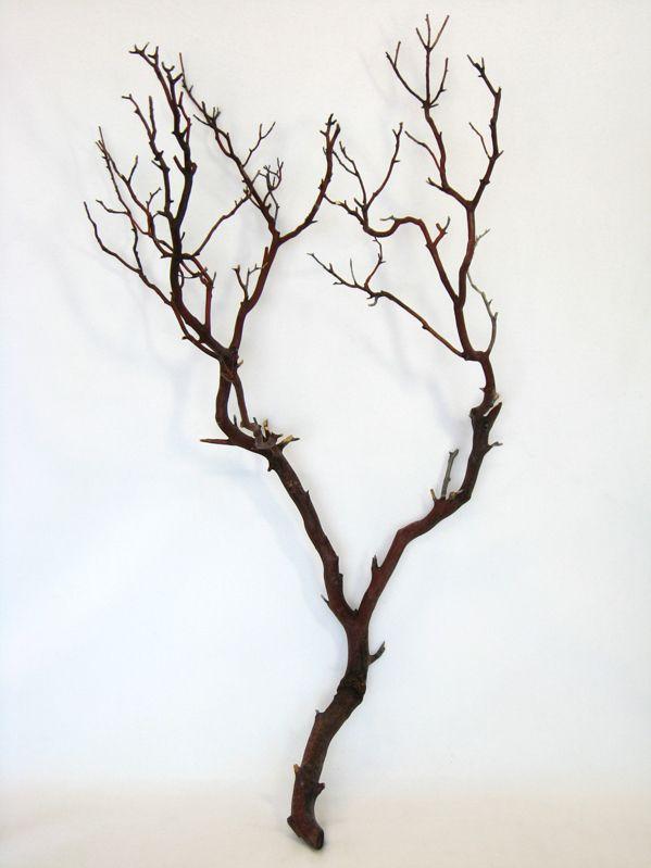 Natural Manzanita Branches Reddish Brown 24-36 tall $12- Idea for Bride