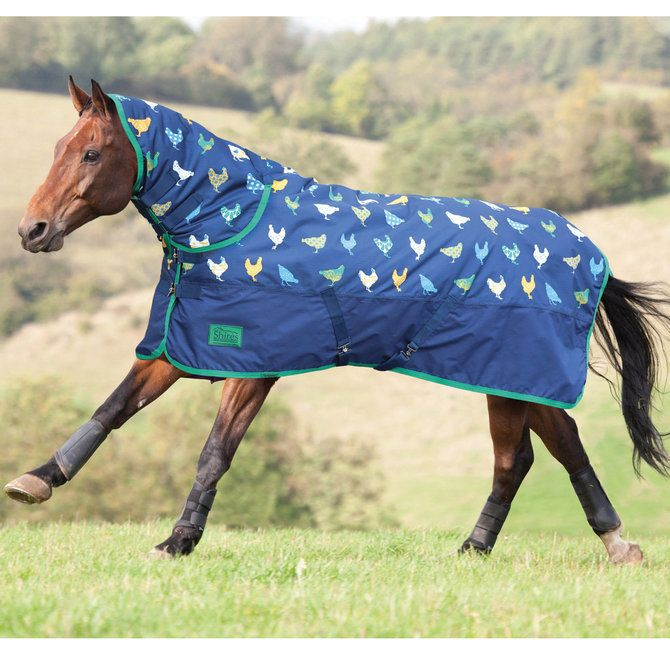 Shires Tempest Original Combo En Print Sizes From Retailing At