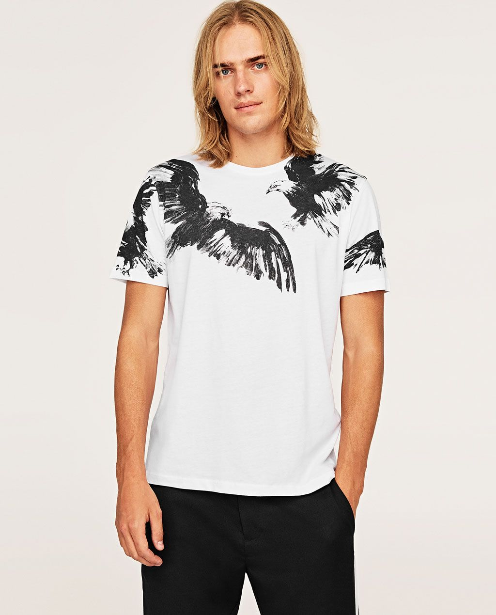8a536a09a70b Image 2 of EAGLE T-SHIRT from Zara | Style {Greg} in 2019 | Mens ...