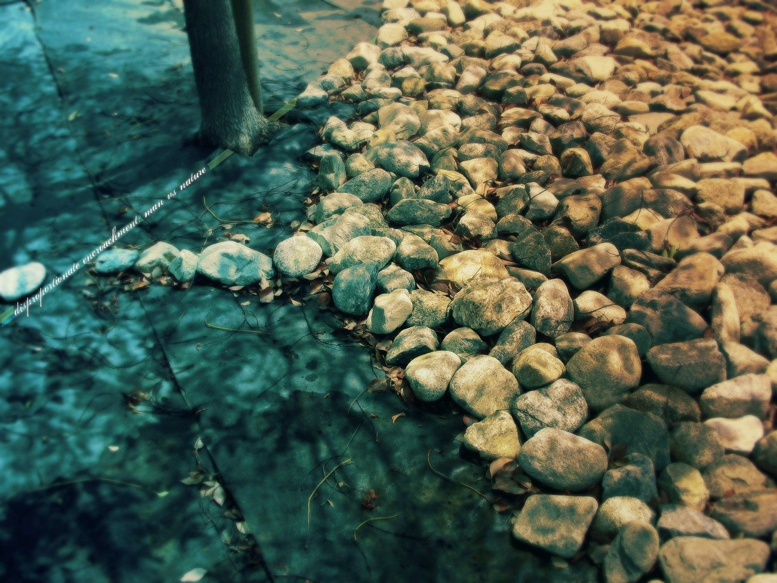 Pebbles on the brook