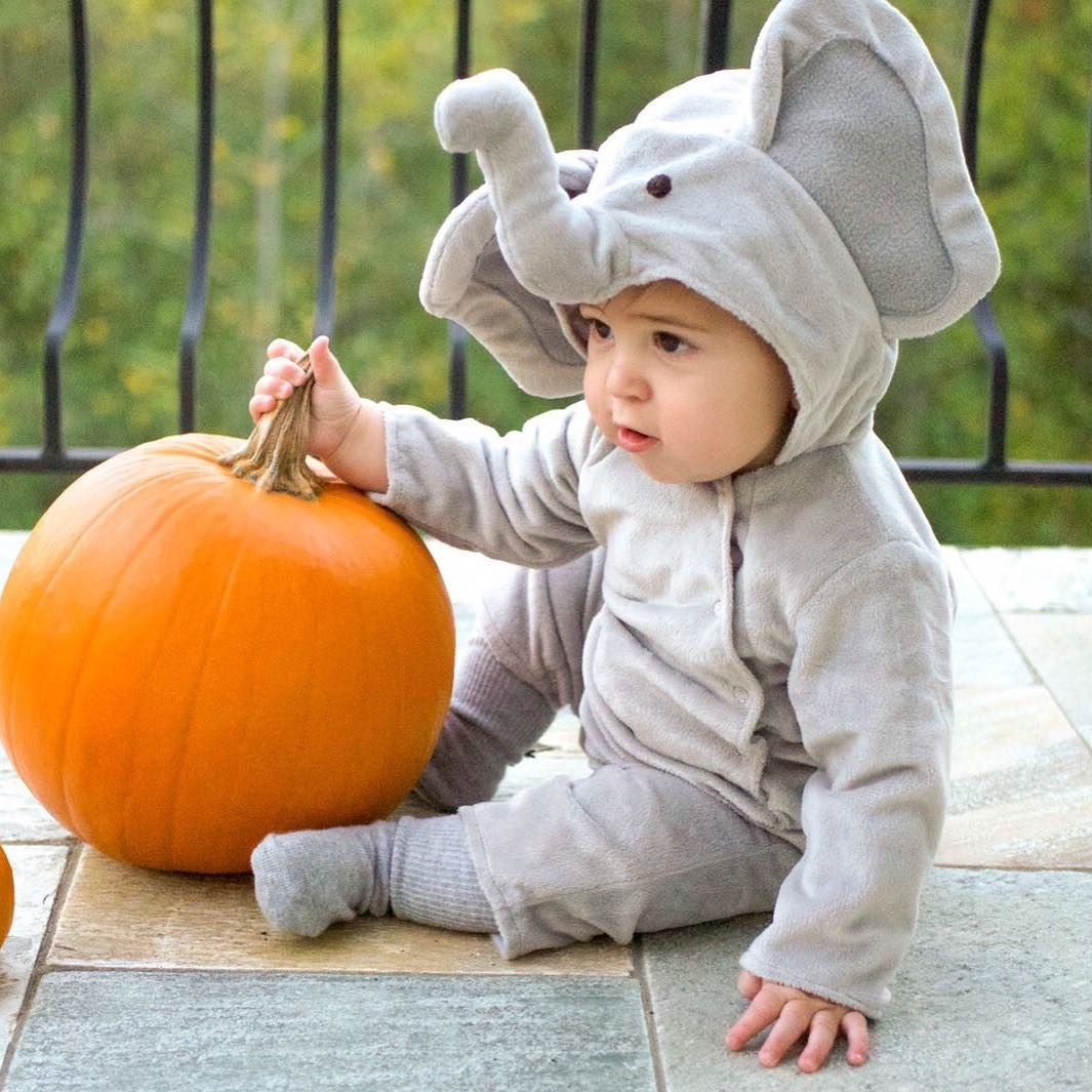 Pottery barn kids, baby elephant costume Baby elephant