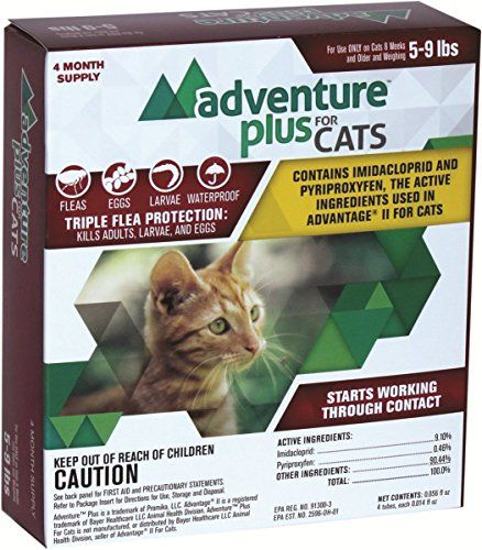 Flea Treatment Cats Revolution Adventure Plus 4 Dose Cat 5 9