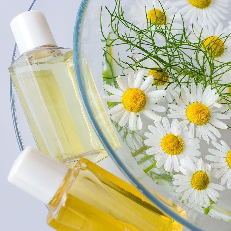 shampoo selber machen rezept kamillen shampoo f r. Black Bedroom Furniture Sets. Home Design Ideas