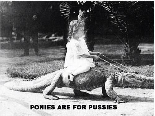 Ponies are for pussies.