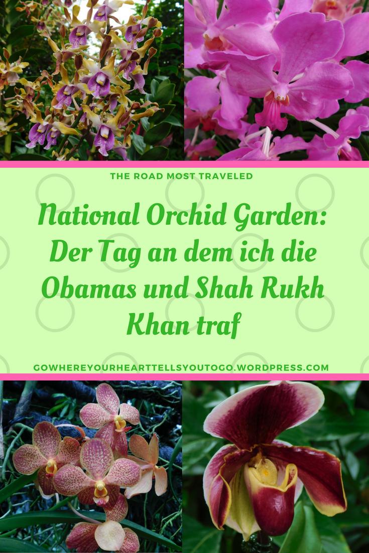 Der National Orchid Garden Ist Ein Teil Des Botanischen Gartens In Singapur Eine Wunderbare Farbenfrohe Oase Der Botanischer Garten Singapur Orchideen Garten