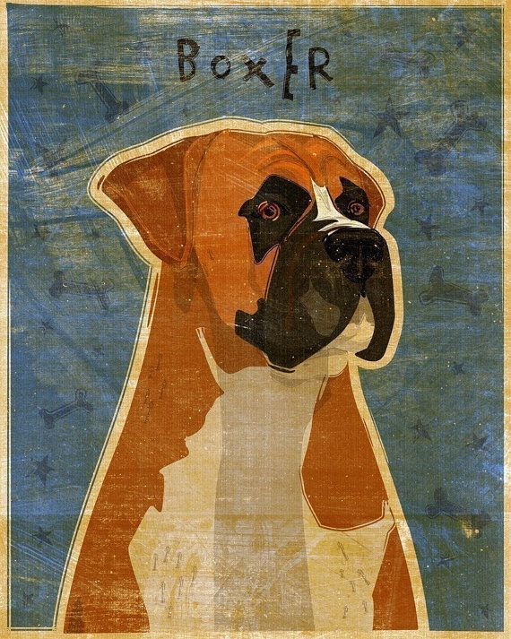 20% Off Year End Sale- Boxer Print 8\