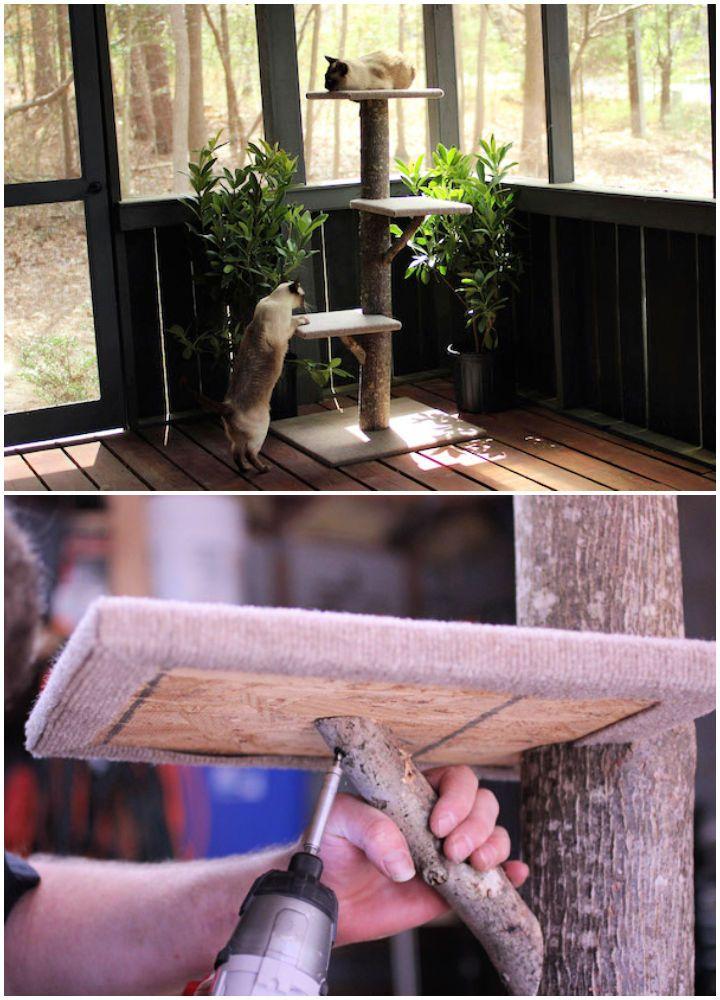 22 diy cat tree plans to build for your feline friend