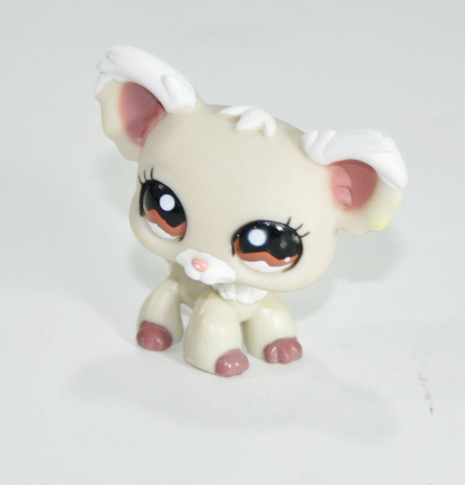Littlest Pet Shop Dog Chihuahua Cream White W Brown Eyes Long