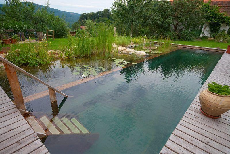 Naturpool treppen garten schwimmteich natur pool und for Rostelemente garten
