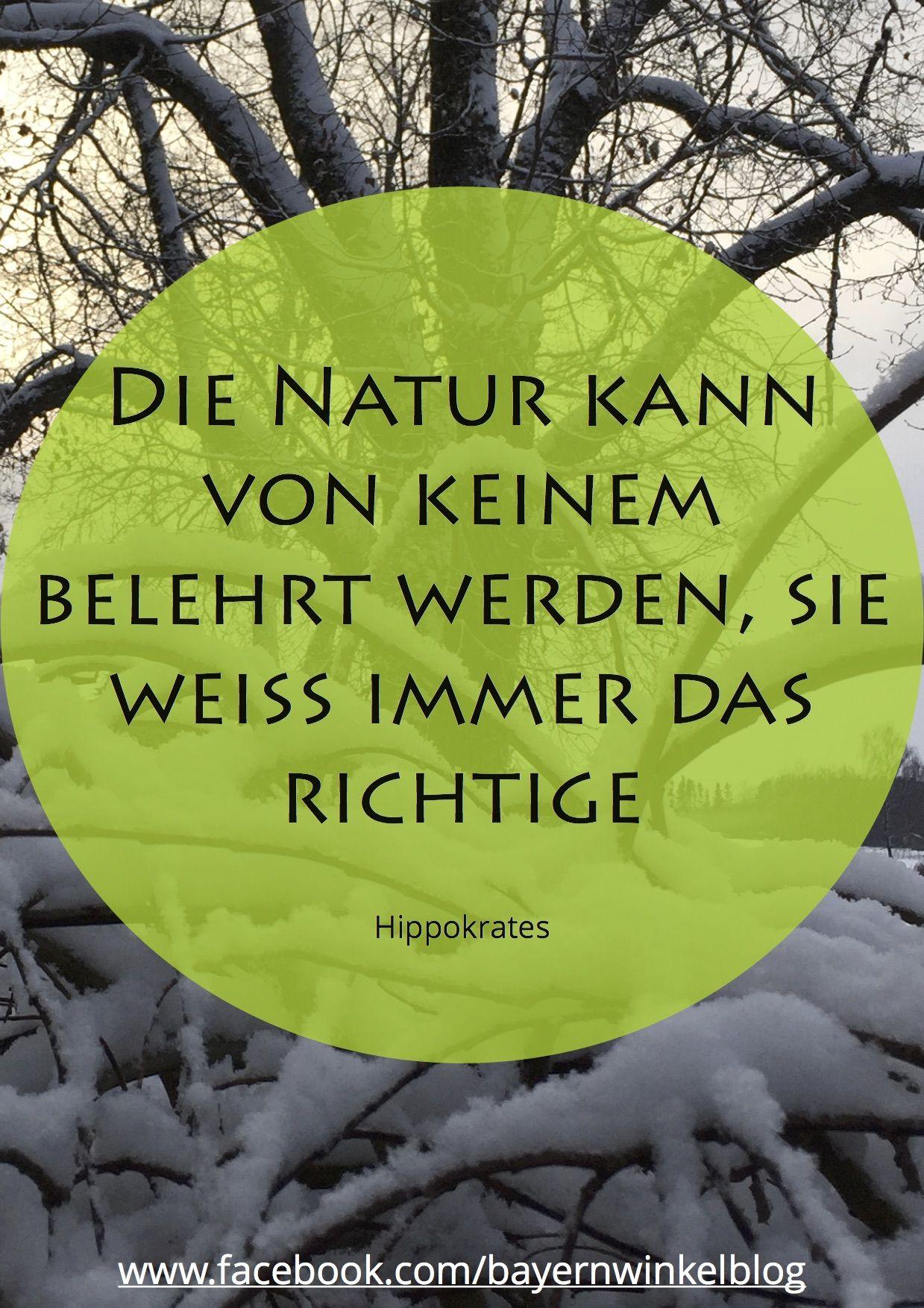 Zitat quote weisheit wisdom words hippokrates natur - Hamburg zitate ...
