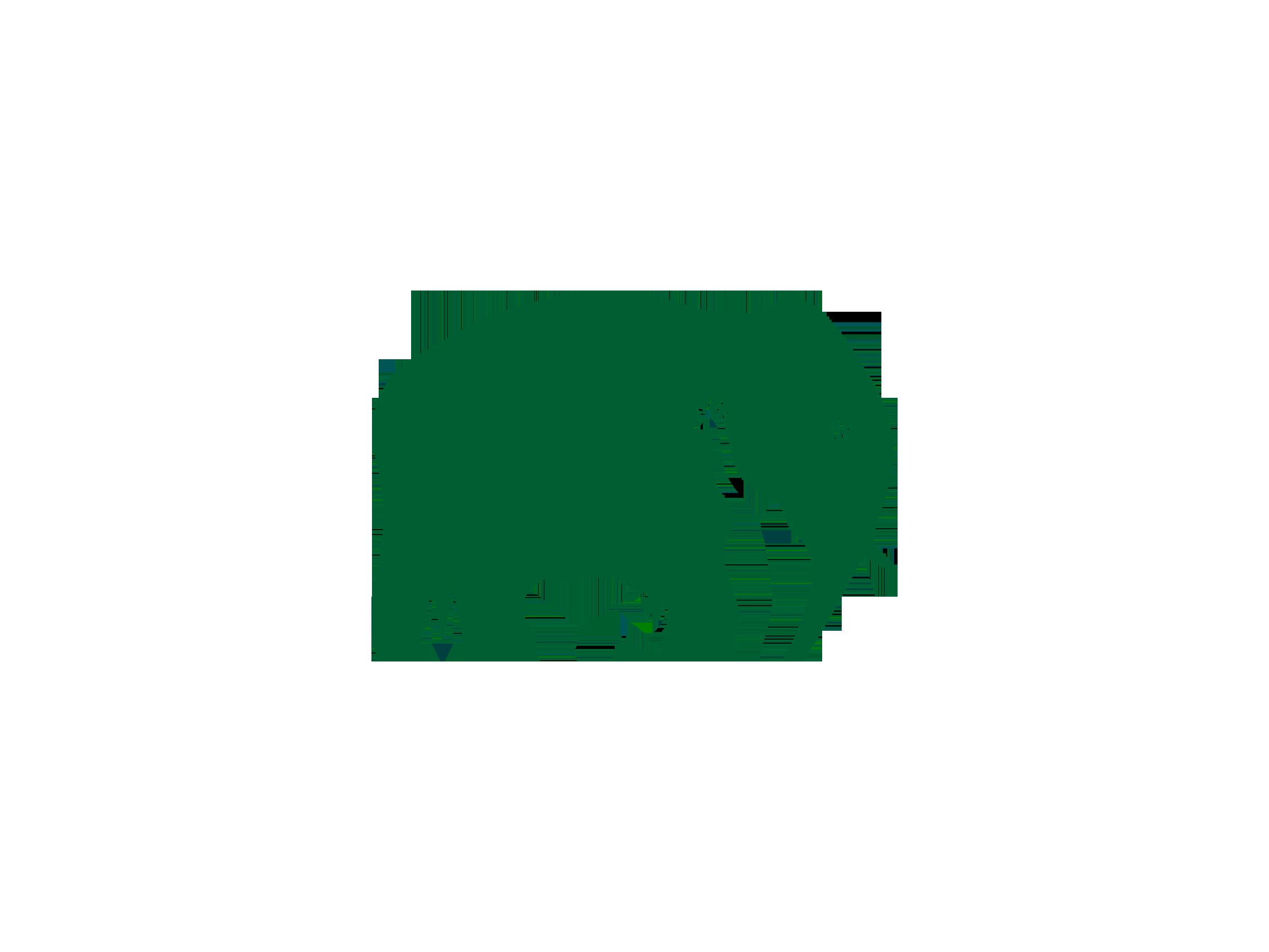 Elephant Logo Logok Elephant