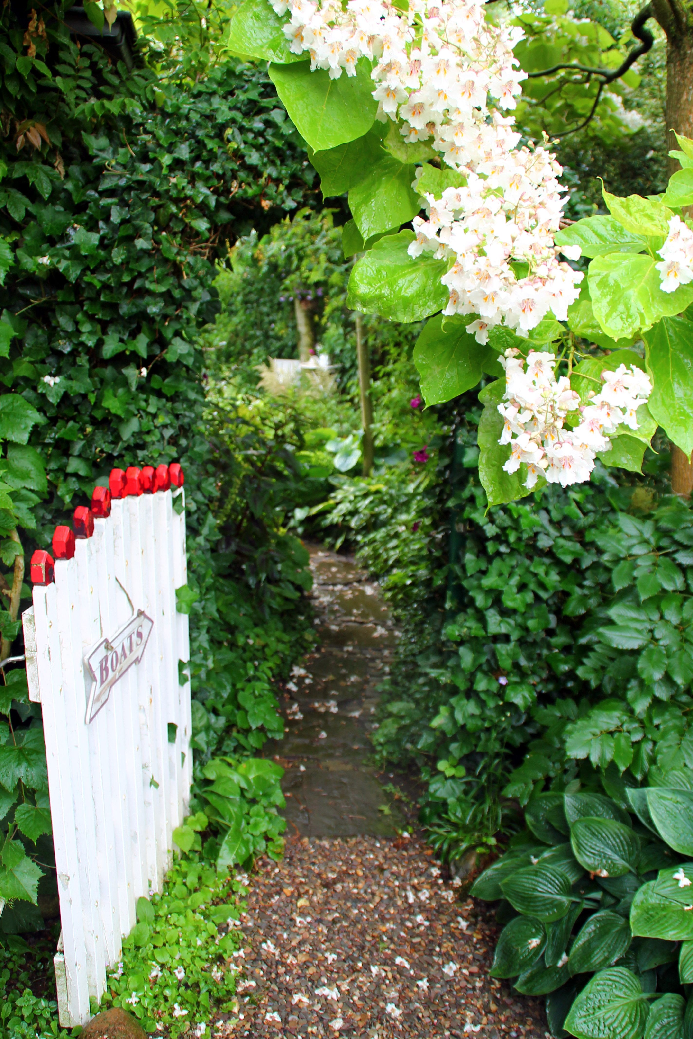 Improve Your Yard With These Helpful Tips | Garden ...