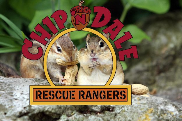 90s cartoons Chip n Dale Rescue Rangers may have focused more on gathering nuts than rescuing. | 90s Cartoons Reimagined As Live Action