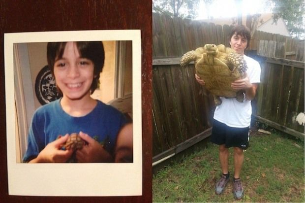 Then and Now Pictures of Animals growing up