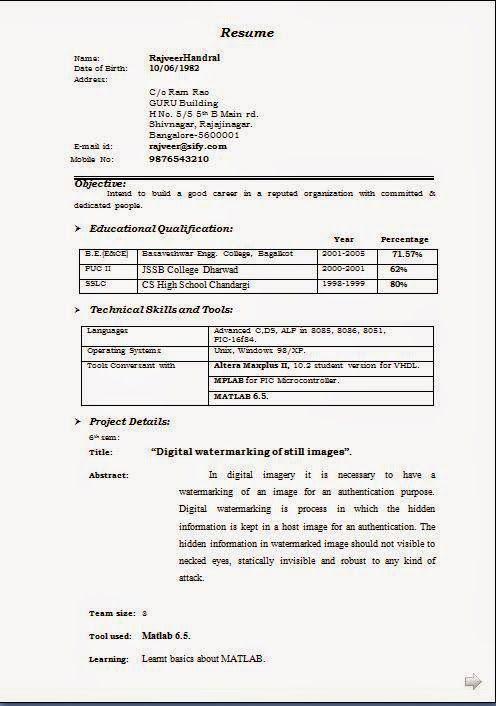 Job Seekers Resume Excellent Curriculum Vitae  Resume  Cv Format