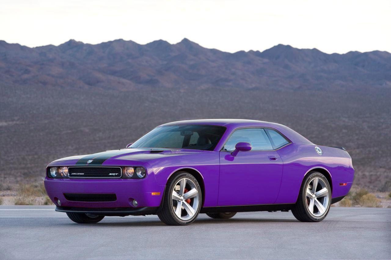 purple things in trees - Bing Images