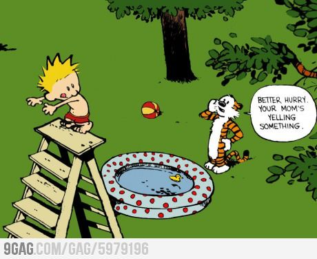 Calvin and Hobbes.  Wonderful classic.  Also, how old do you think the boys will be before one of them tries this?