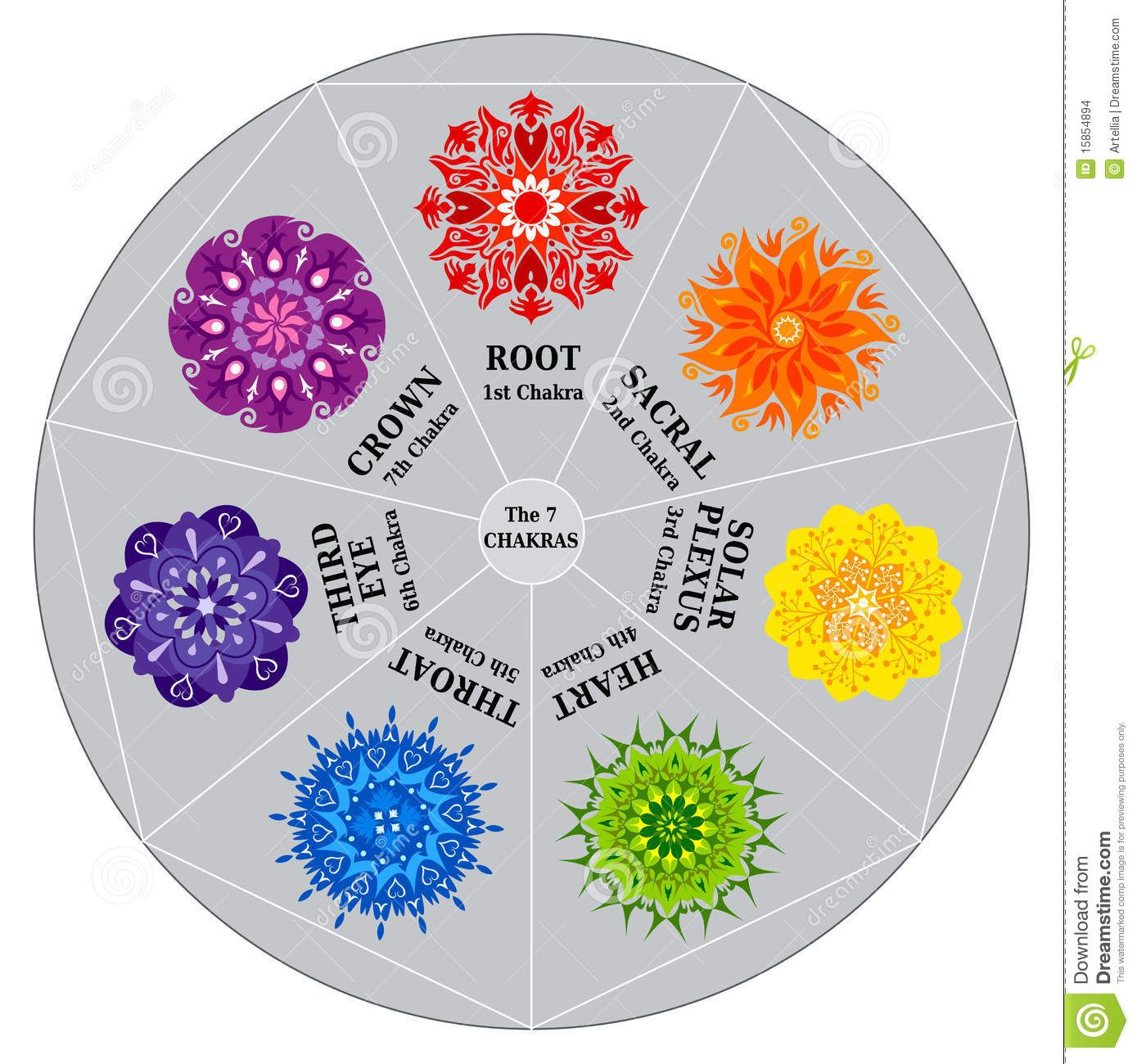 7 chakras color chart with mandalas download from over 27 7 chakras color chart with mandalas download from over 27 million high quality stock photos geenschuldenfo Images