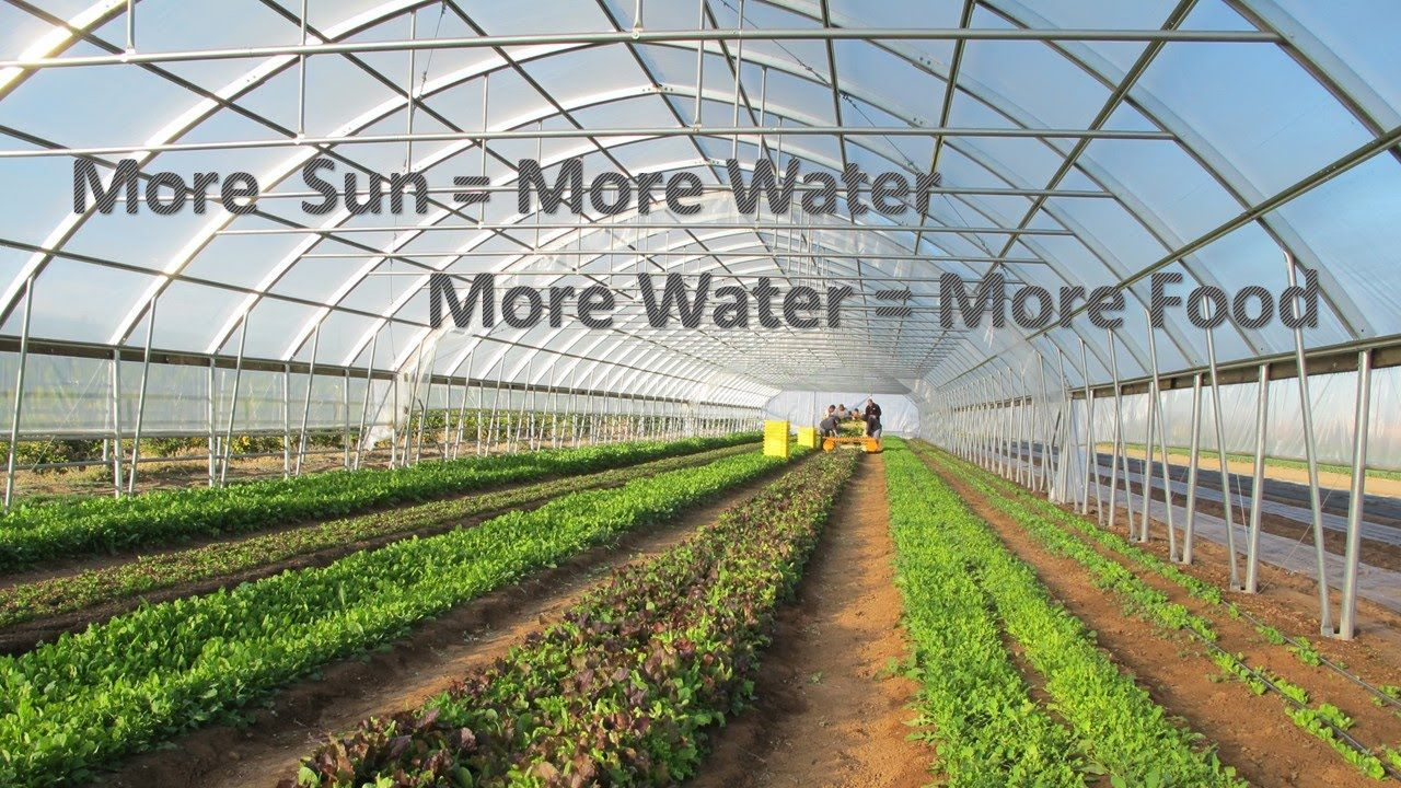 High Tunnel Irrigation with Direct Drive Solar: Part 1