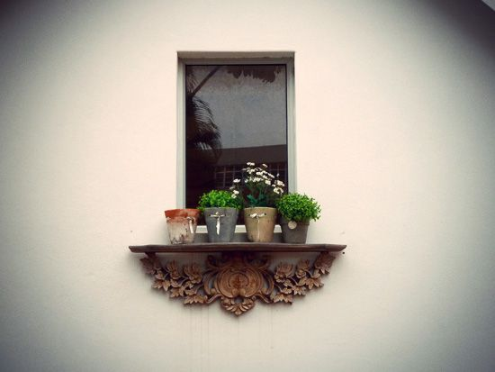 Pretty window ledge at At Liberty Cafe, Windermere Road, Durban