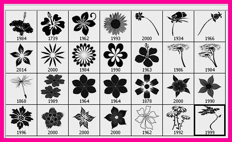 28 High Resolution Flower Brushes For Photoshop With Images Free Brush Photoshop Brushes Photoshop