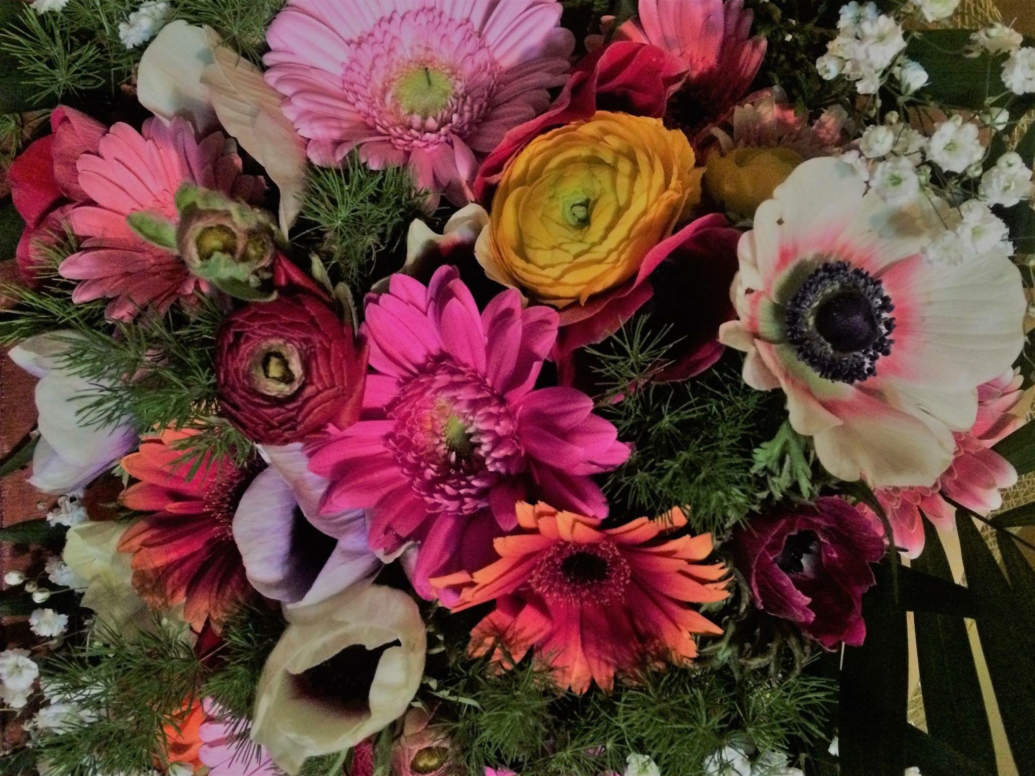 Pin by annie anag on fleurs pinterest