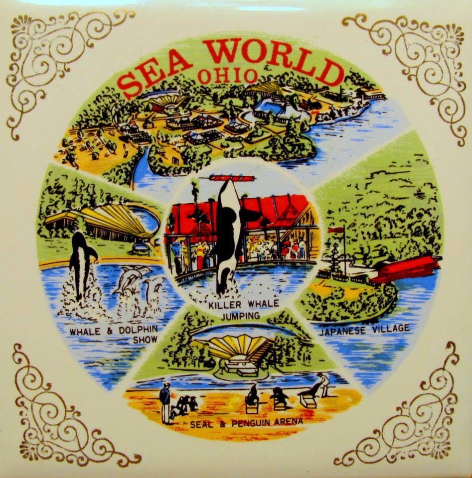 Sea World Ceramic Tile Aurora Ohio Columbus