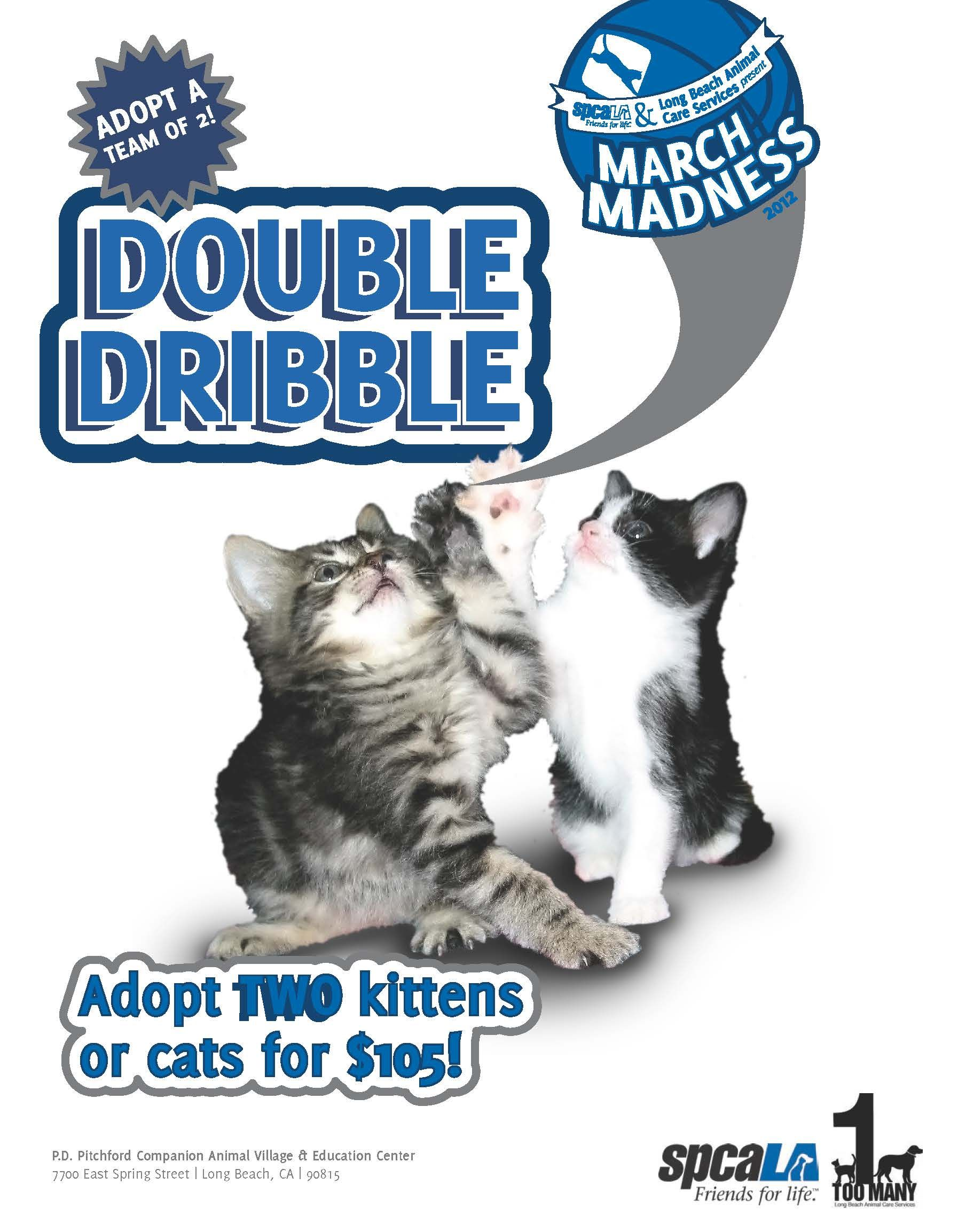 March Madness! During the month of March, adopt a team of