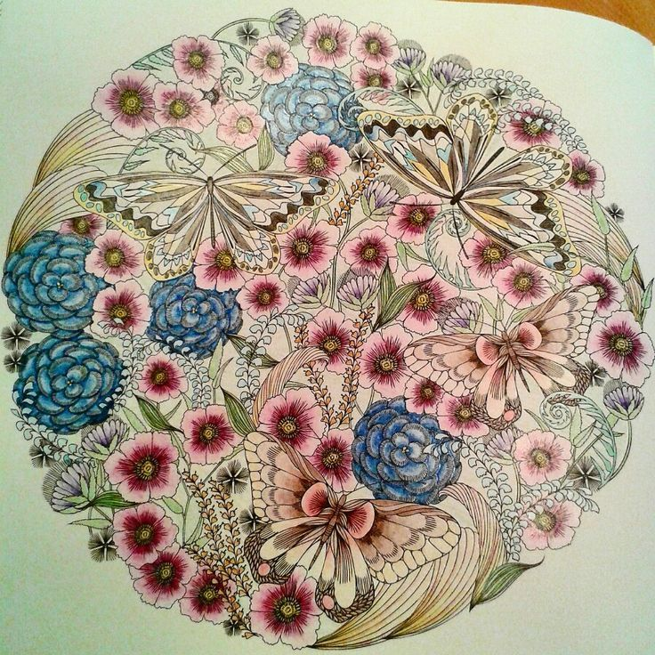 Millie Marotta Flowers And Butterflies