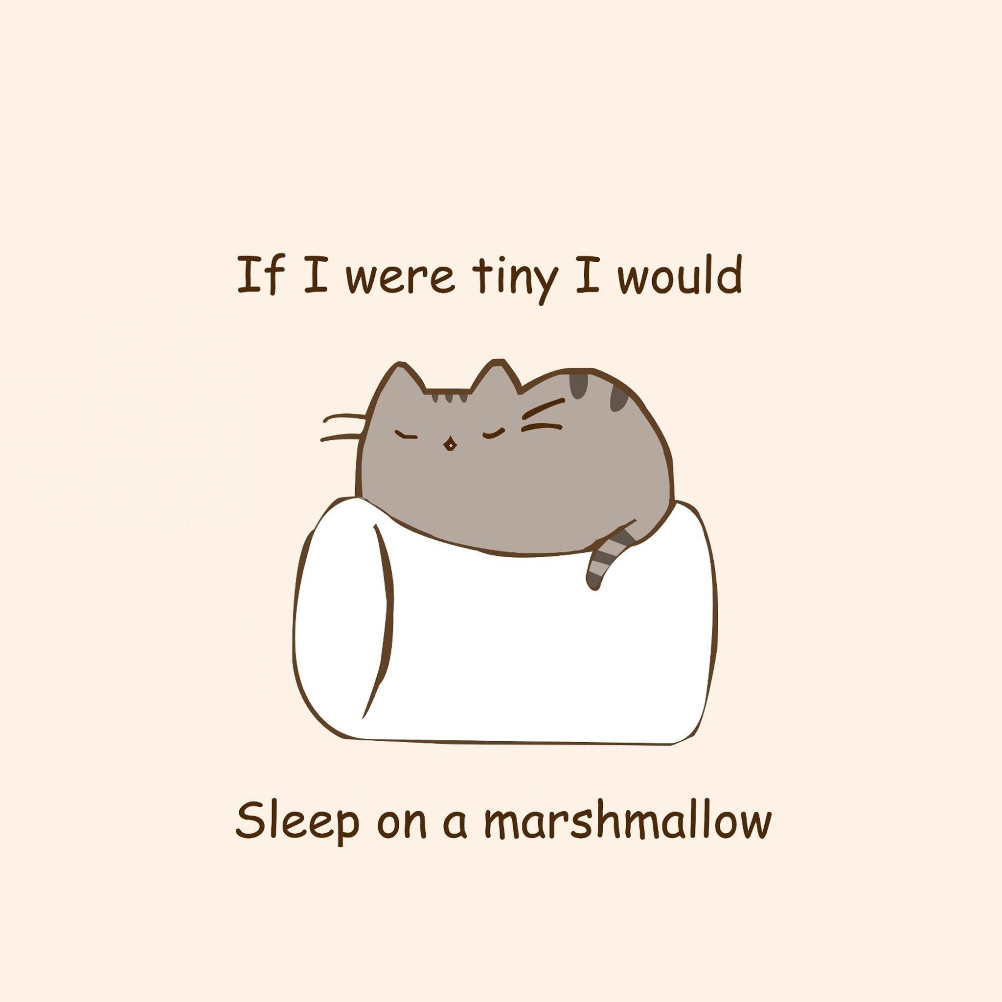 Pin By Kaitlin M On My Things Pusheen Cat Pusheen Cute Cute Quotes