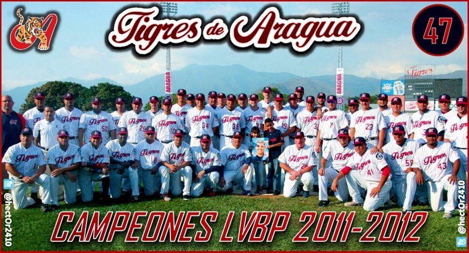 Campeoner 2011 - 2012