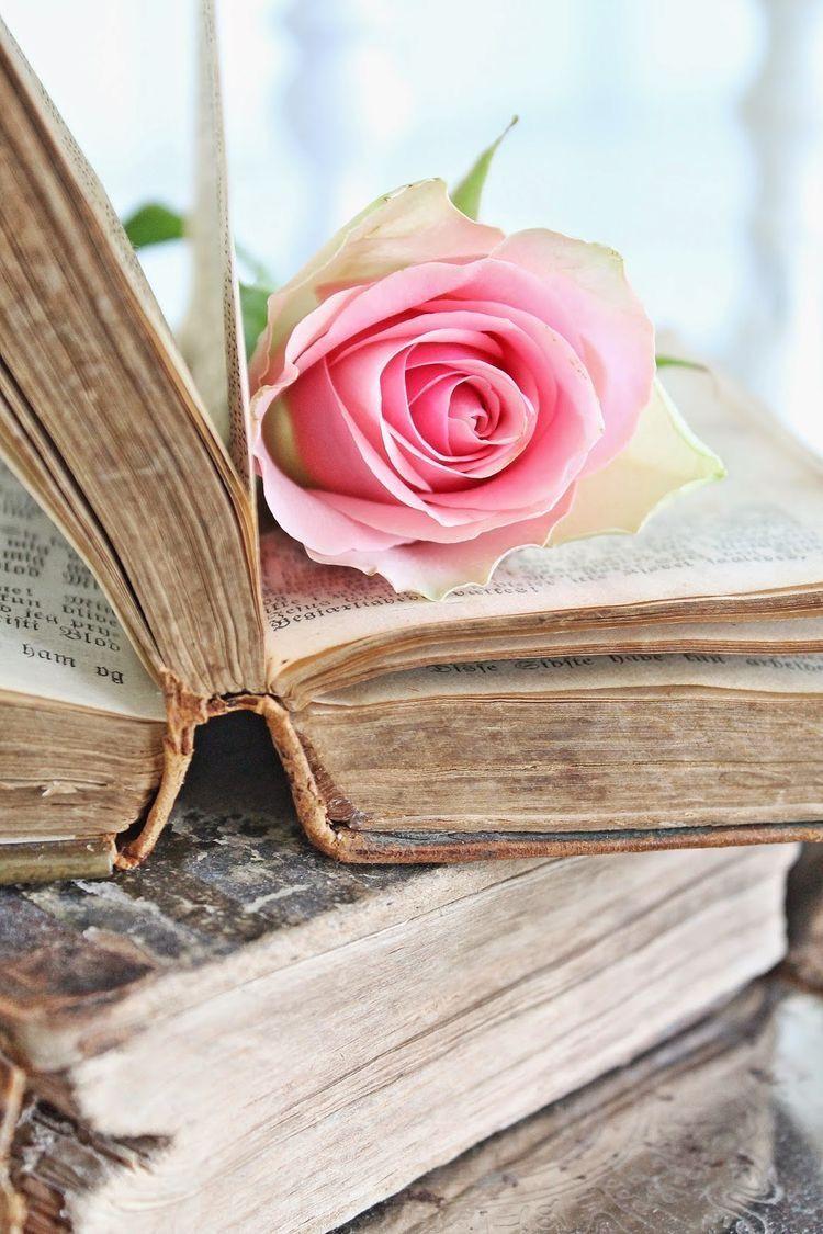 Красивые картинки раскрытых книг