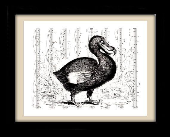 Dodo Bird, Black and White, Victorian Art, Bird Art, Sheet Music ...