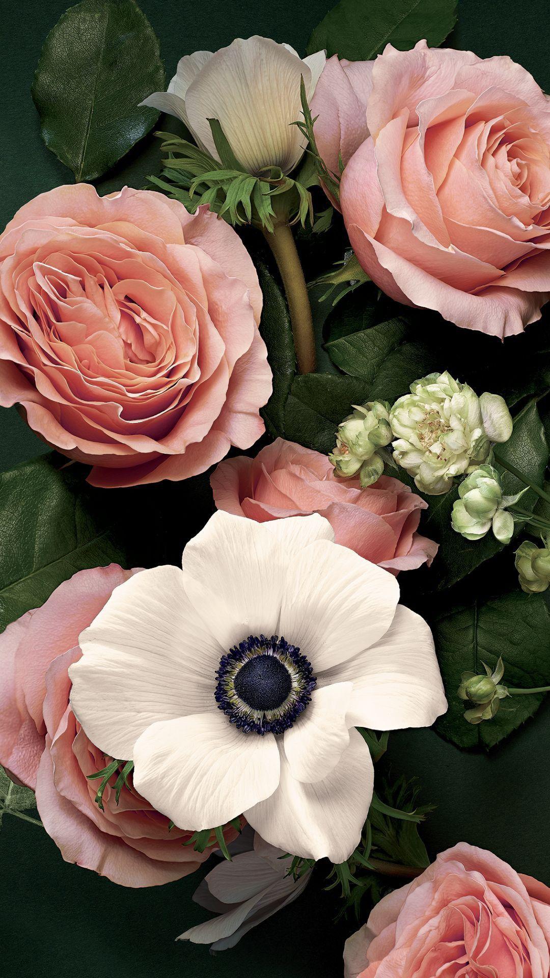 Pin De Maryse Allard En Judith32ny Imagenes De Flores Flor Estetica Fondos De Pantalla De Primavera