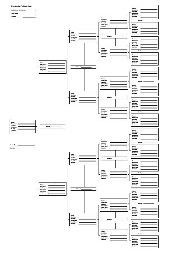 5 generation pedigree chart