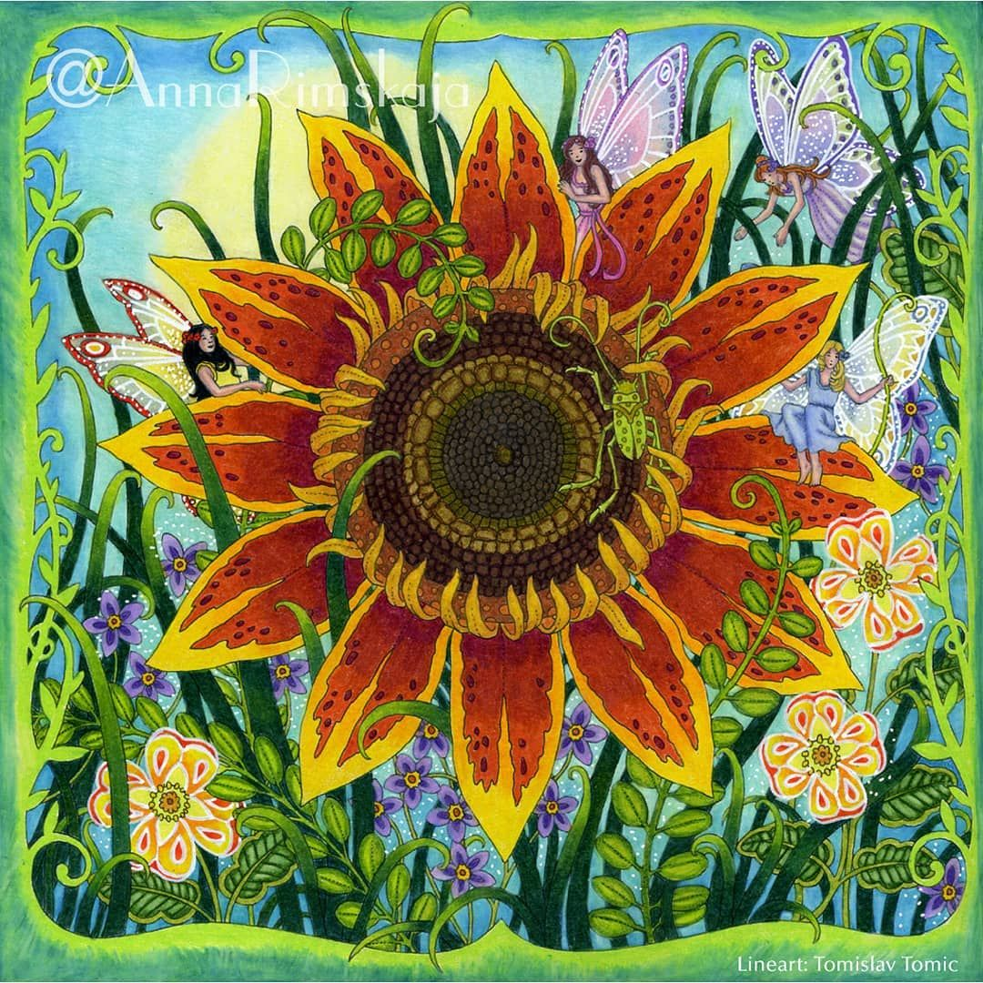 Today I Show You The Fairy Sunflower Garden From The