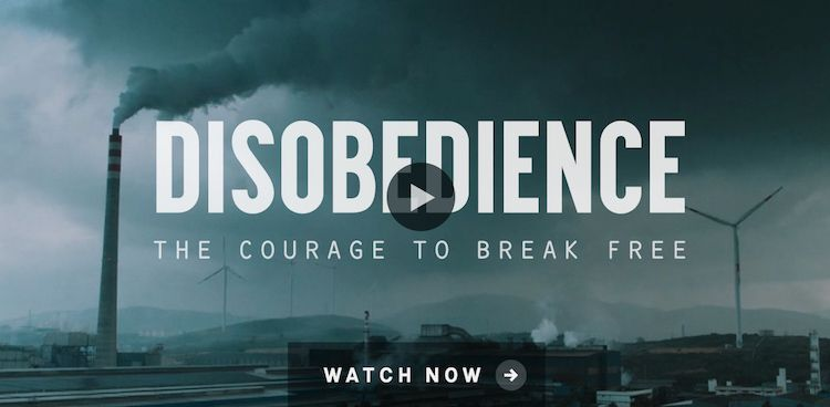 Disobedience Stream German