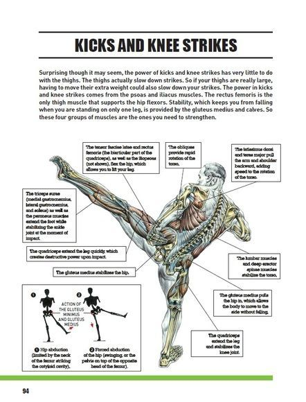 Best Selling Author Frederic Delavier Takes On Mixed Martial Arts Providing More Than 120 Exercises 2 Martial Arts Sparring Martial Arts Workout Martial Arts