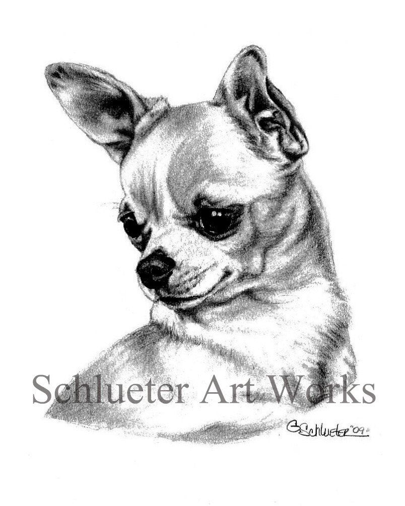 chihuahua coloring pages - Bing Images | dog patterns | Pinterest ...