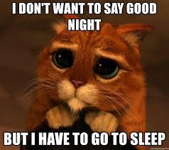 Pin By Sarah Eldakak On Good Night Sorry Memes Memes Funny Memes