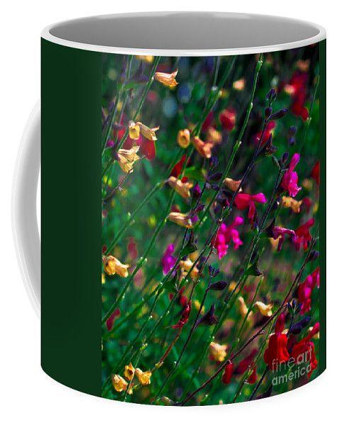 Living Rainbow Coffee Mug by Scott Hervieux.  Small (11 oz.)
