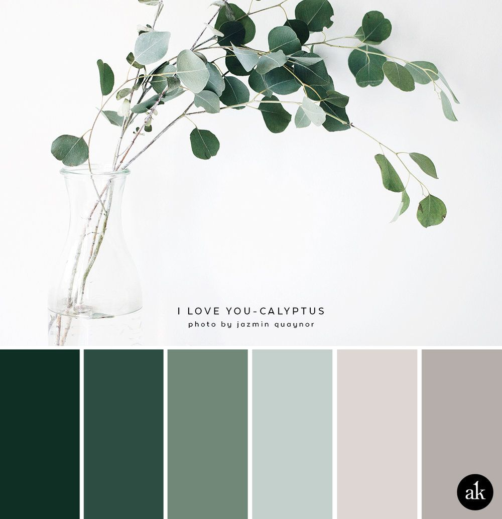 A eucalyptus inspired color palette blue green color for Natural paint color palette