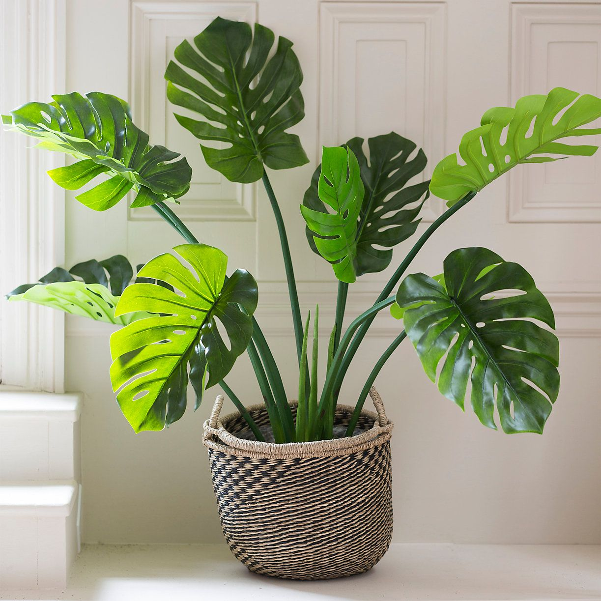 Woven Seagrass Basket Pot Terrain Plants Natural Baskets