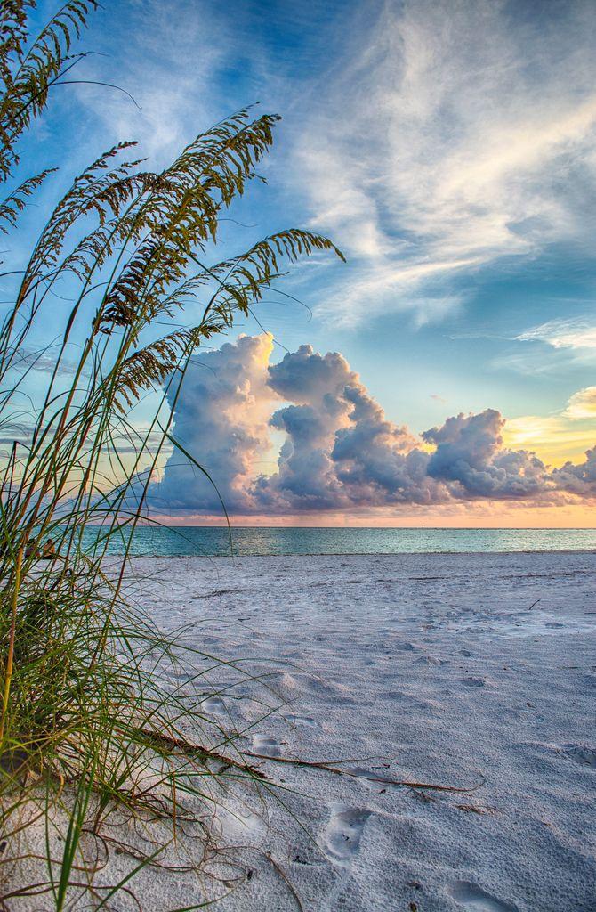 Sarasota Sunset Through The Sea Oats Florida Scenery Beautiful Nature Beautiful Beaches